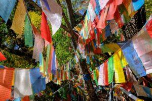 Bunte Gebetsfahnen am Wanderpfad zum Mingyong Gletscher in Yunnan, China im Herbst