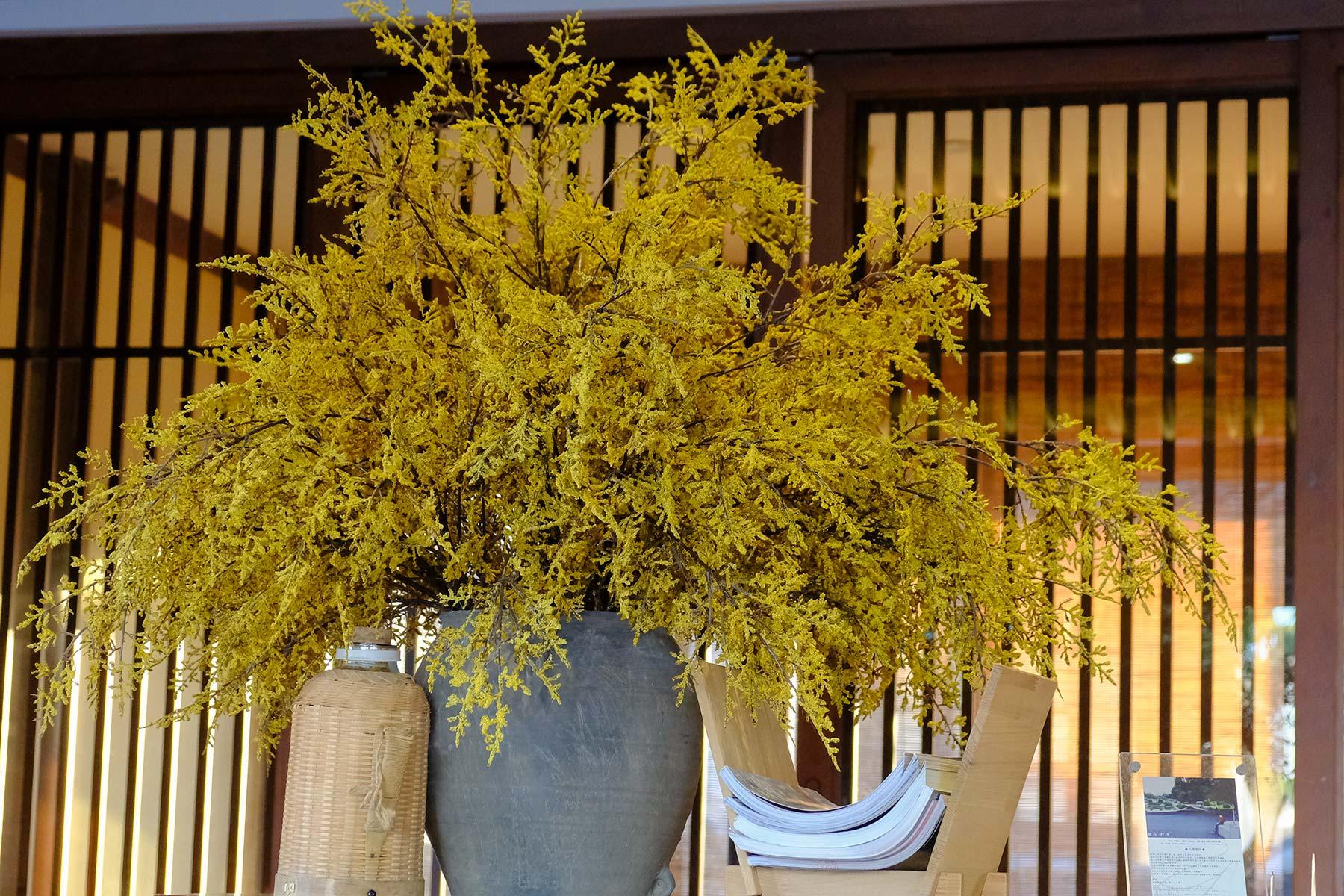 Café am Yuehu Park im Frühling in Ningbo, China
