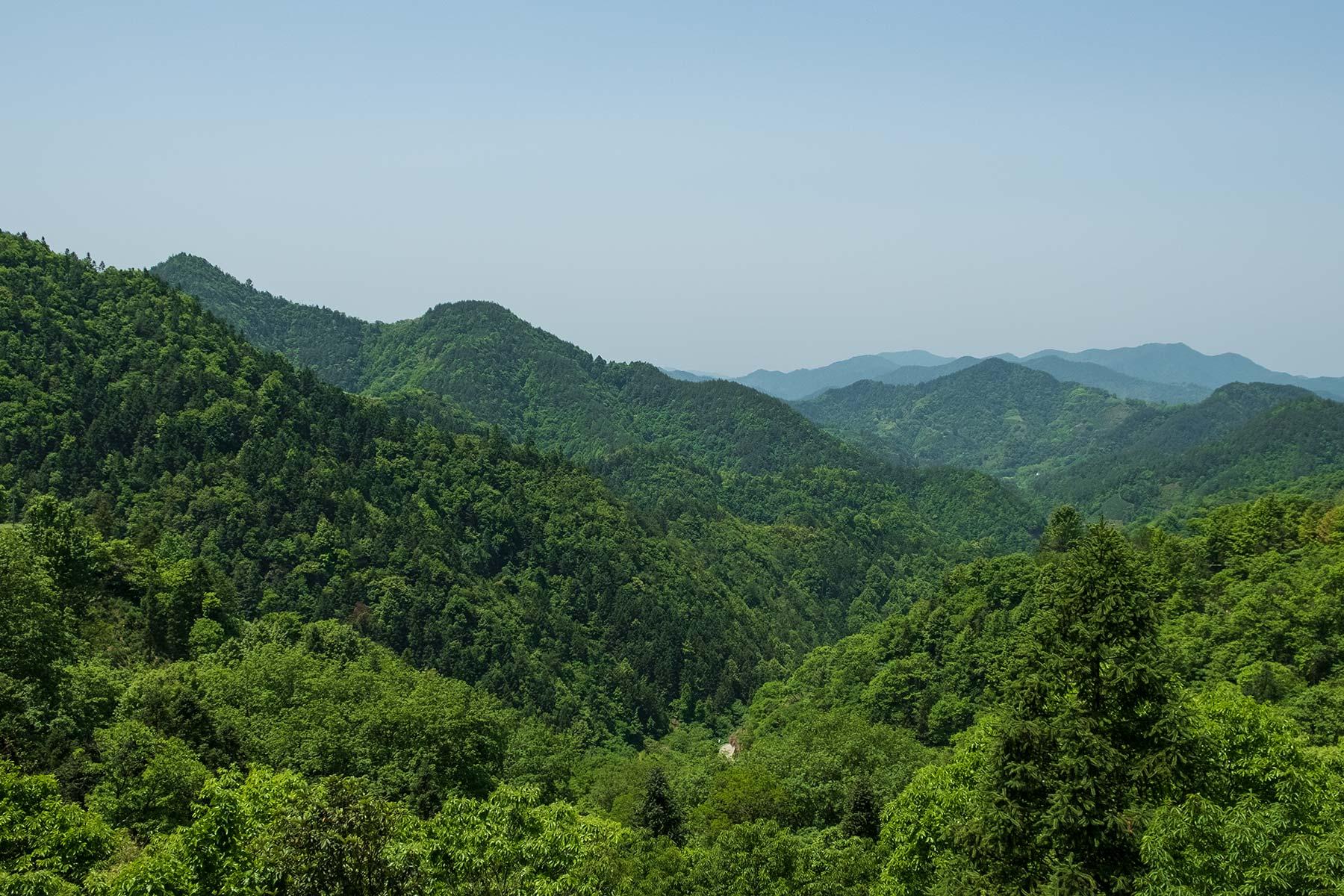 Blick von Yangchan Tulou Dorf in Anhui in die Natur
