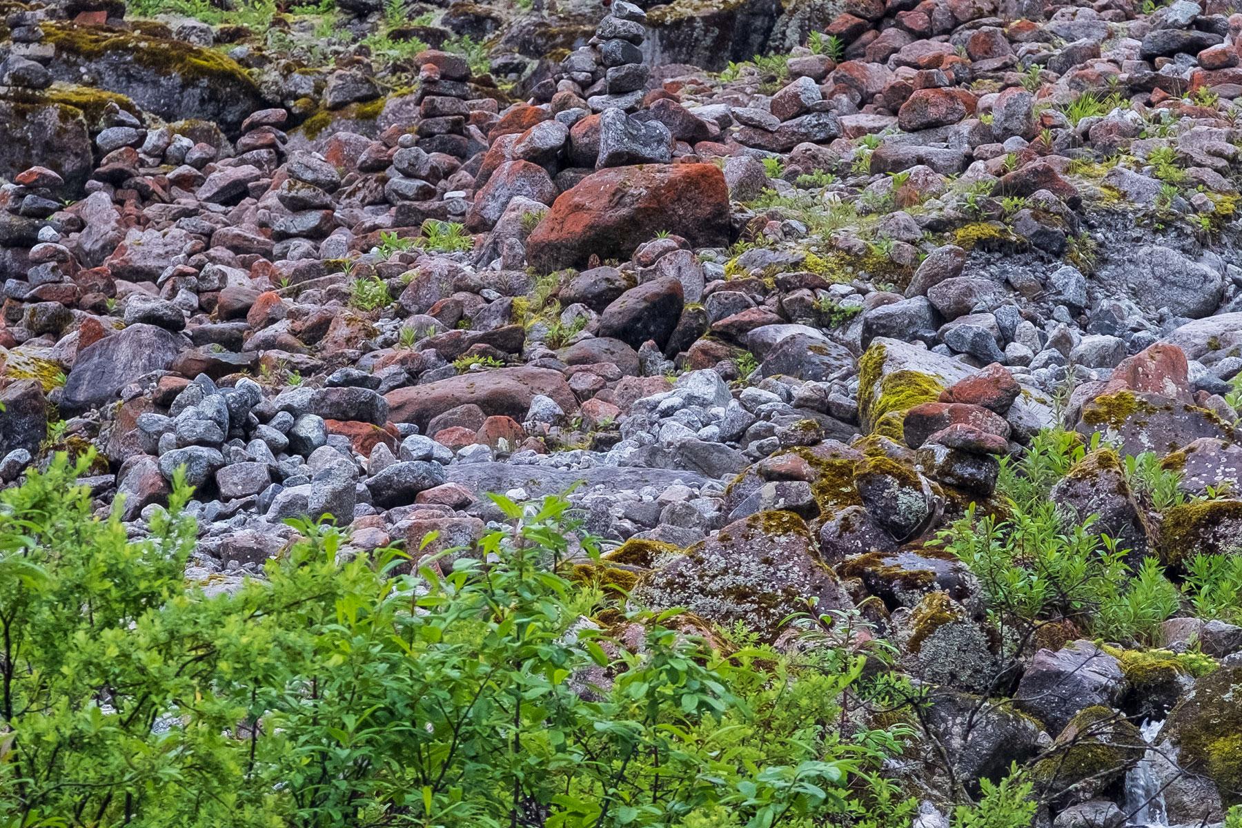 Rote Steine im Vogel im Hailuogou Gletscher Park in Sichuan