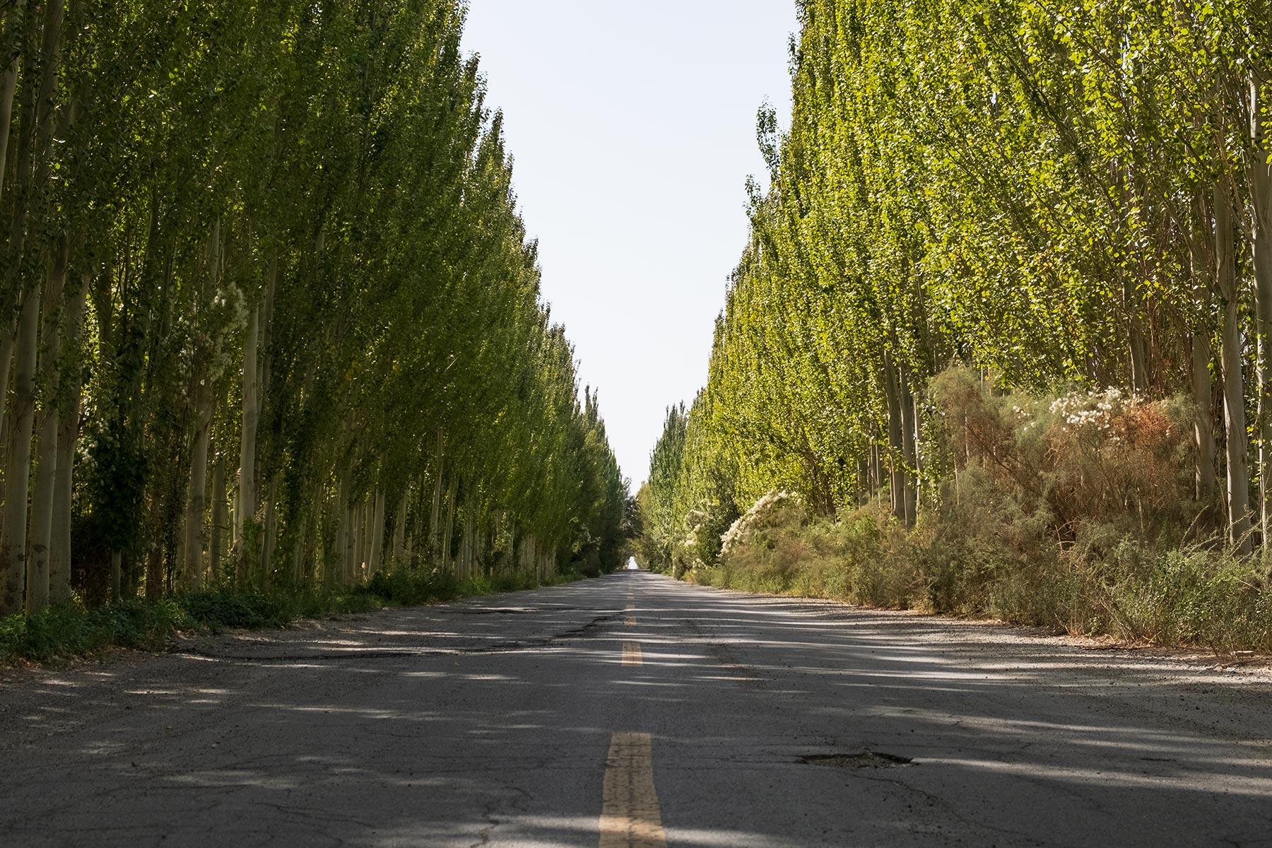 Lange gerade Straße in Gansu in China