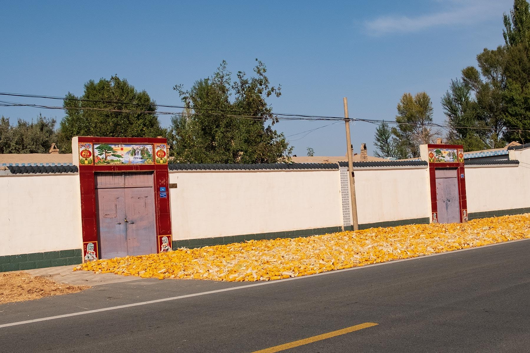 Mais wird auf der Straße getrocknet in Gansu, China