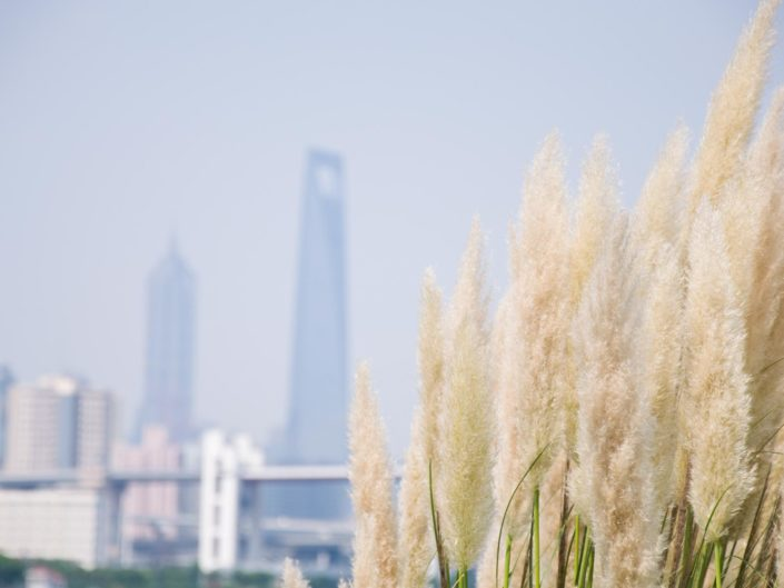 Ausflug mit dem Rad in Pudong