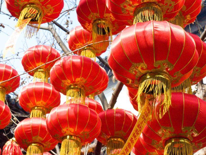 Chinese New Year 春节