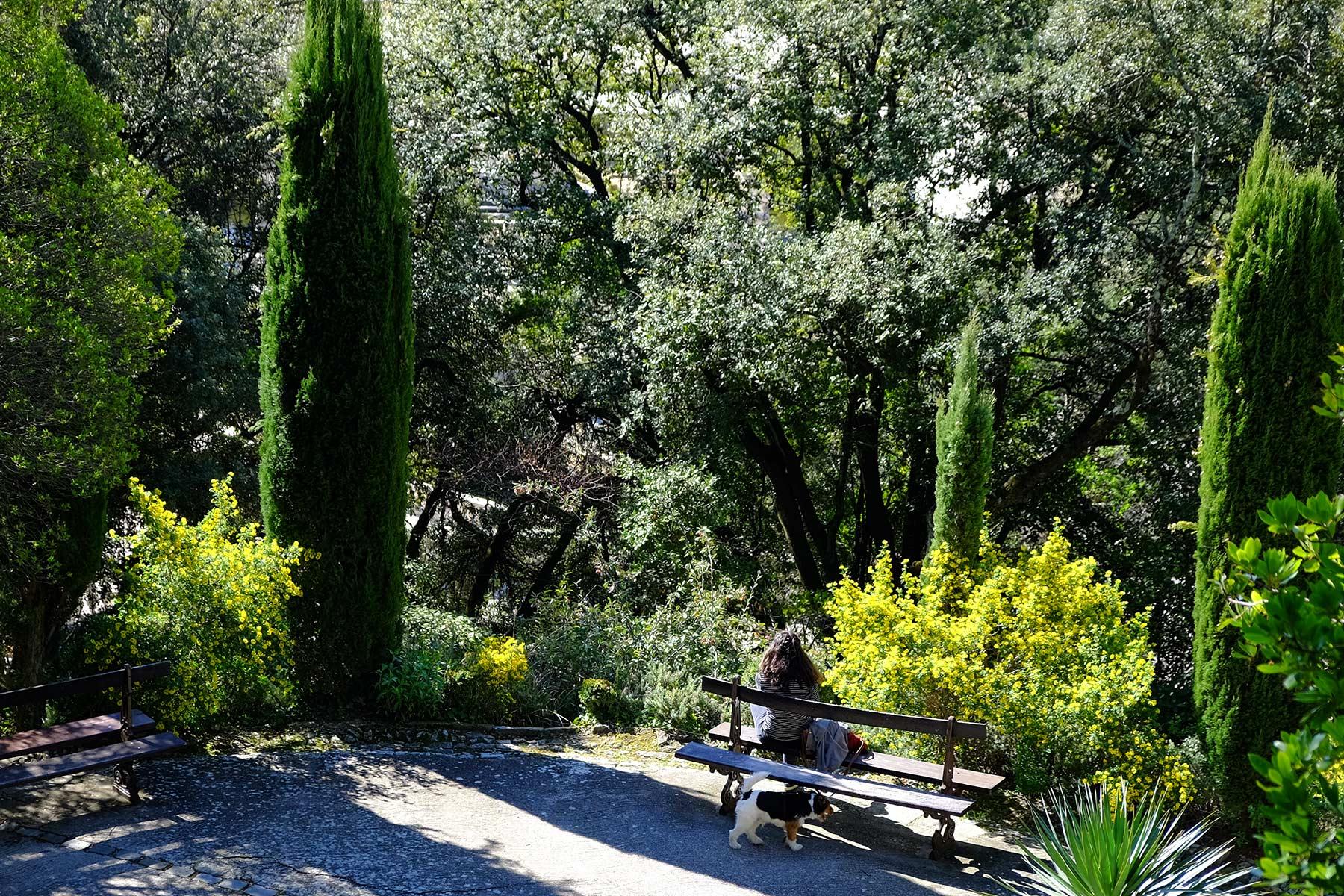 Jardin de la Fontaine in Nîmes, Frankreich