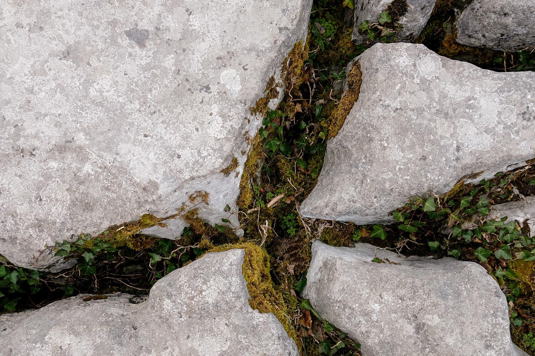 Typischen knietiefen Karren im Burren Nationalpark