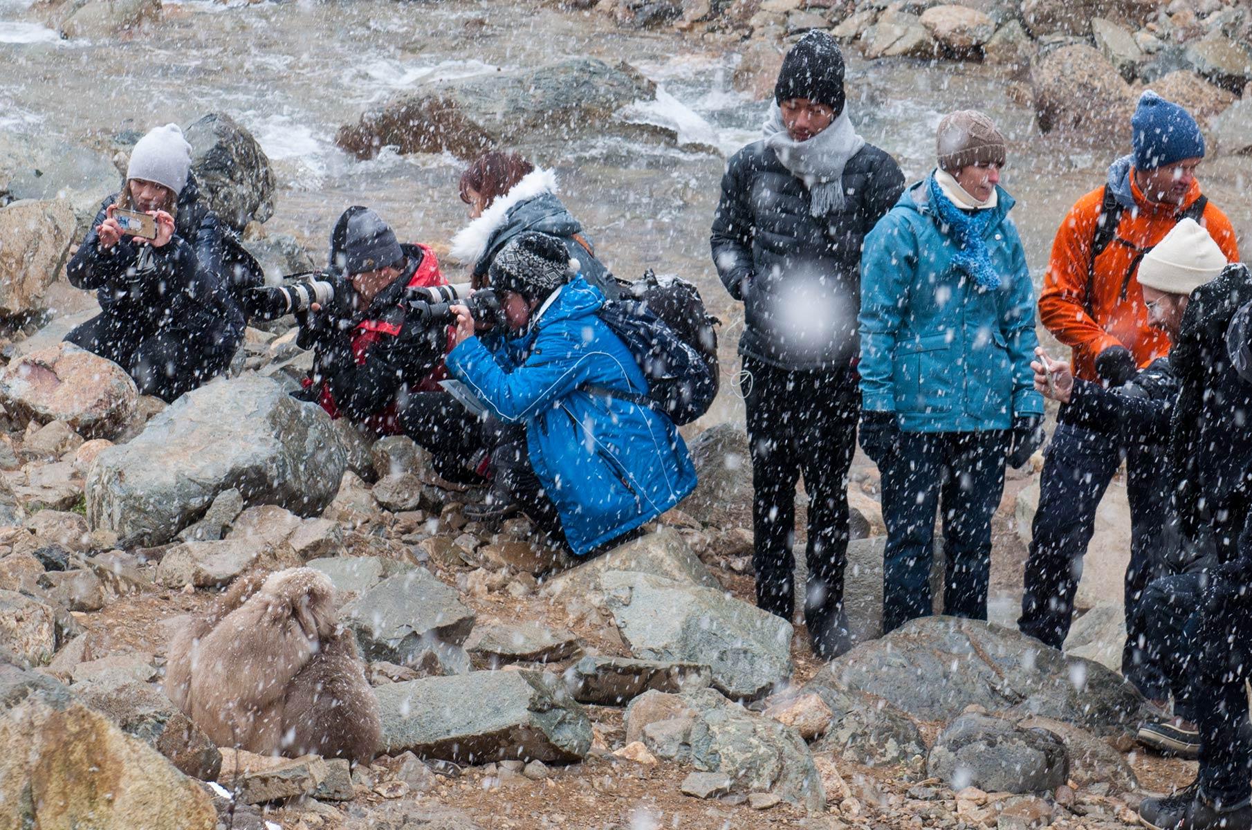 Fotografen und Schnee im Jigokudani Snow Mountain Park im Winter