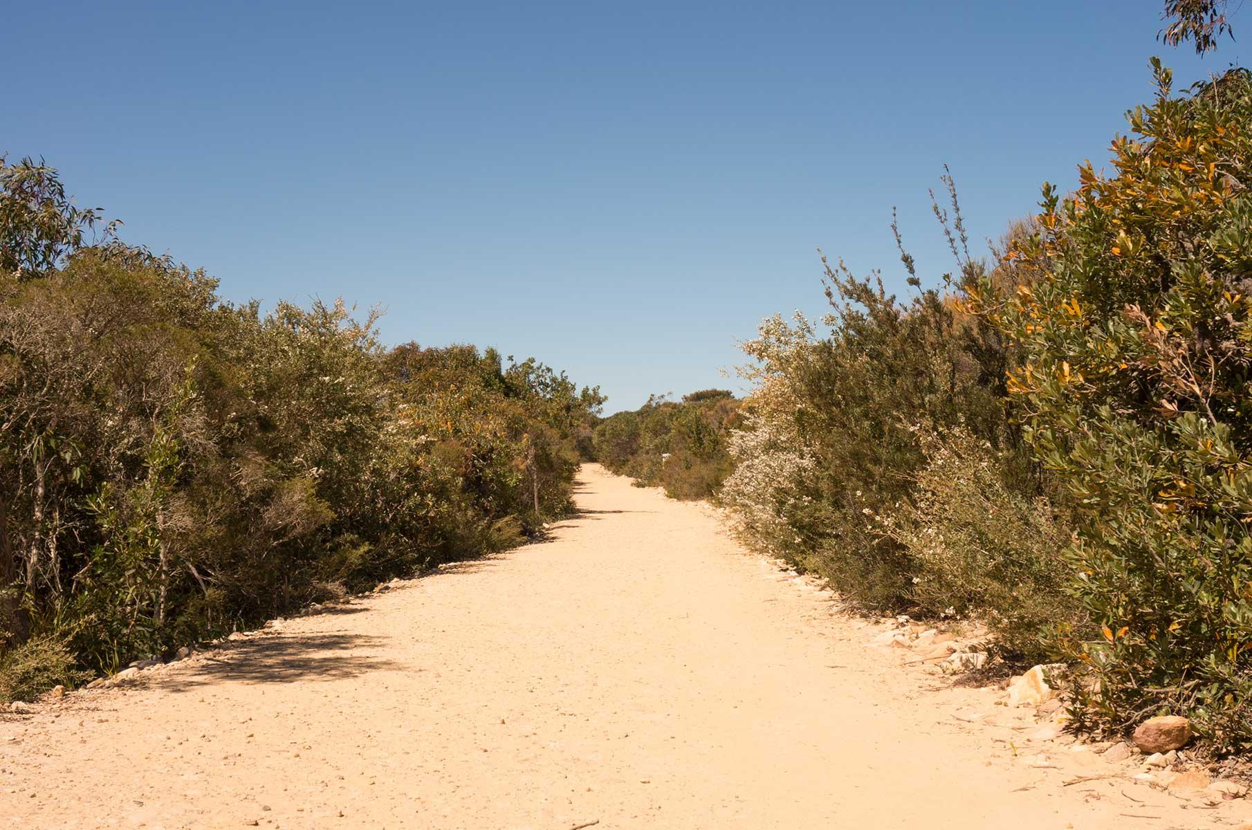 Royal National Park, Australien