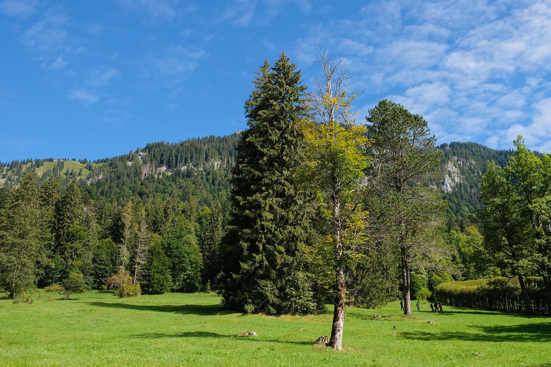 Park Linderhof, Ettal