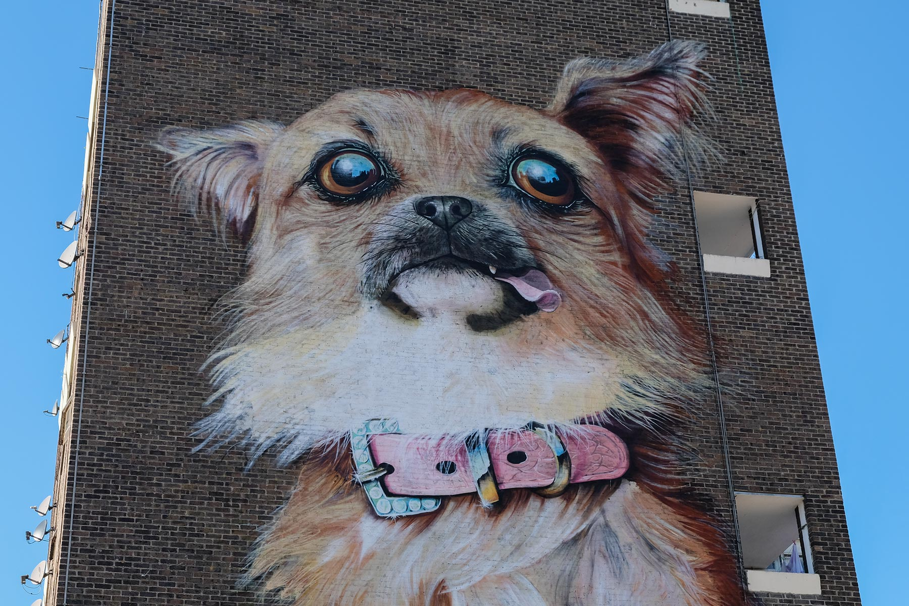 Street Art London - Boe & Irony 'Chihuahua', Chrisp Street at the corner of East India Dock Road, Poplar