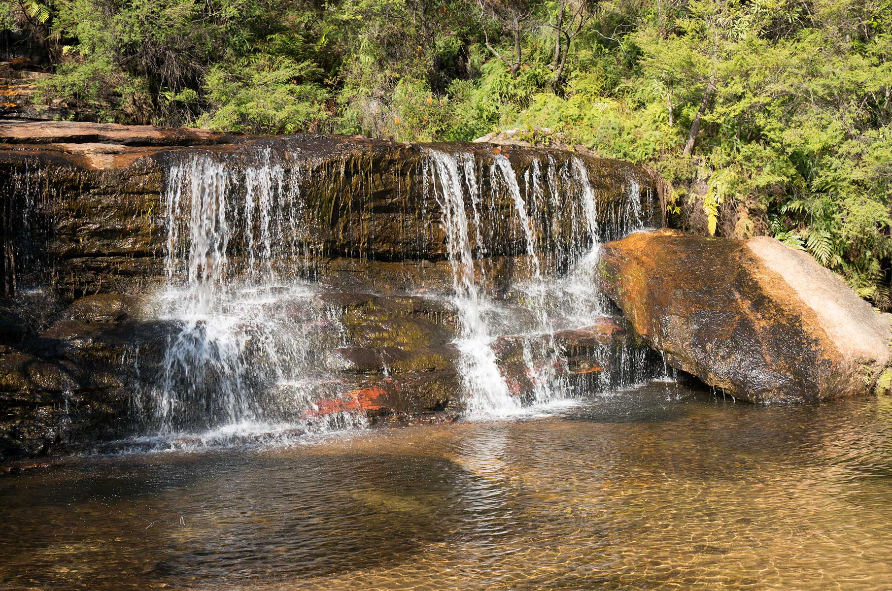 Wentworth Wasserfälle im Blue Mountains Nationalpark, Australien