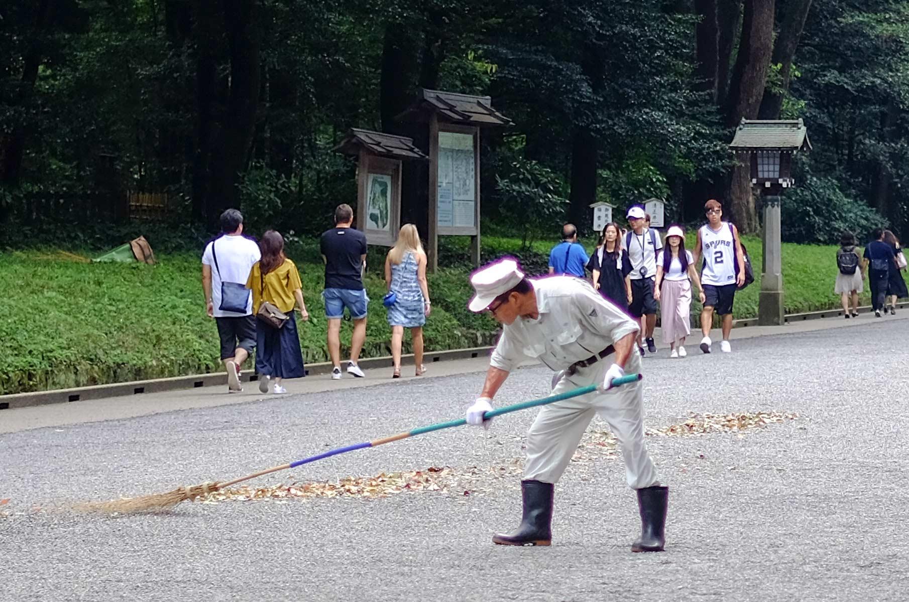 Laubkehren im Yoyogi Park in Tokyo, Japan